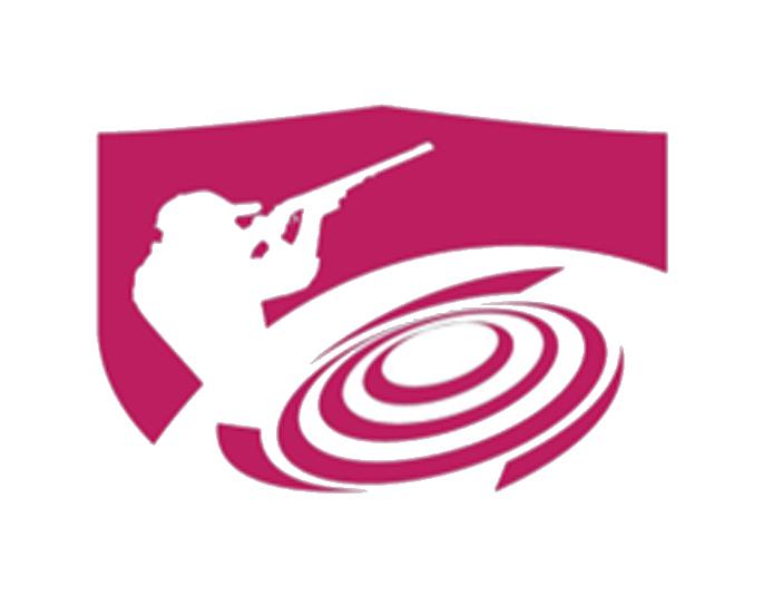 mini logo Grand Prix Qatar 2019.jpg