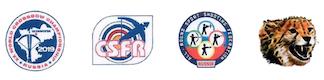logos CdM IAU 2019.jpg